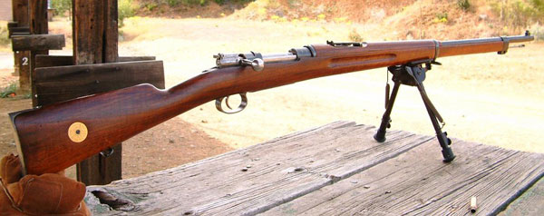 used_for_100_years_by_the_swedish_military_the_6.55mm_round_is_the_bees_knees_with_deer_hunters_that_know-1